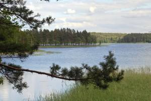juodieji lakajai ezeras
