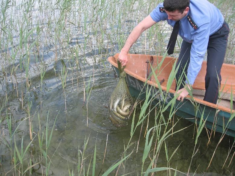 zvejybos leidimai