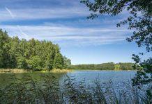 alksno ezeras