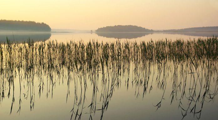 luodis ezeras
