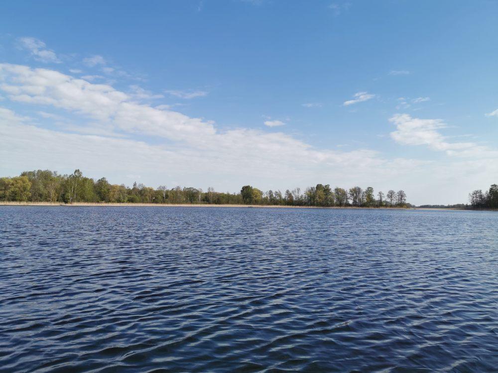 svedasas ezeras