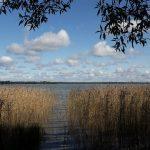 dysnu-ezeras